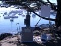Overlooking Monterey Harbor